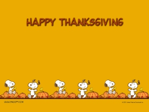 Happy Thanksgiving to all our friends in the USA